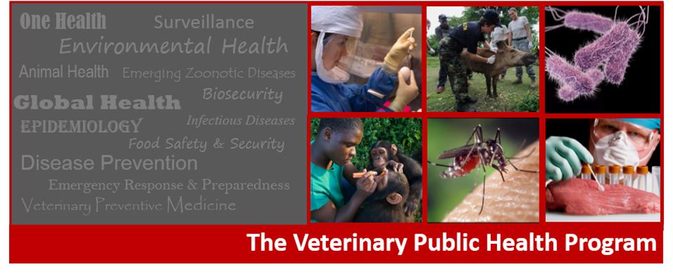The Veterinary Public Health Program