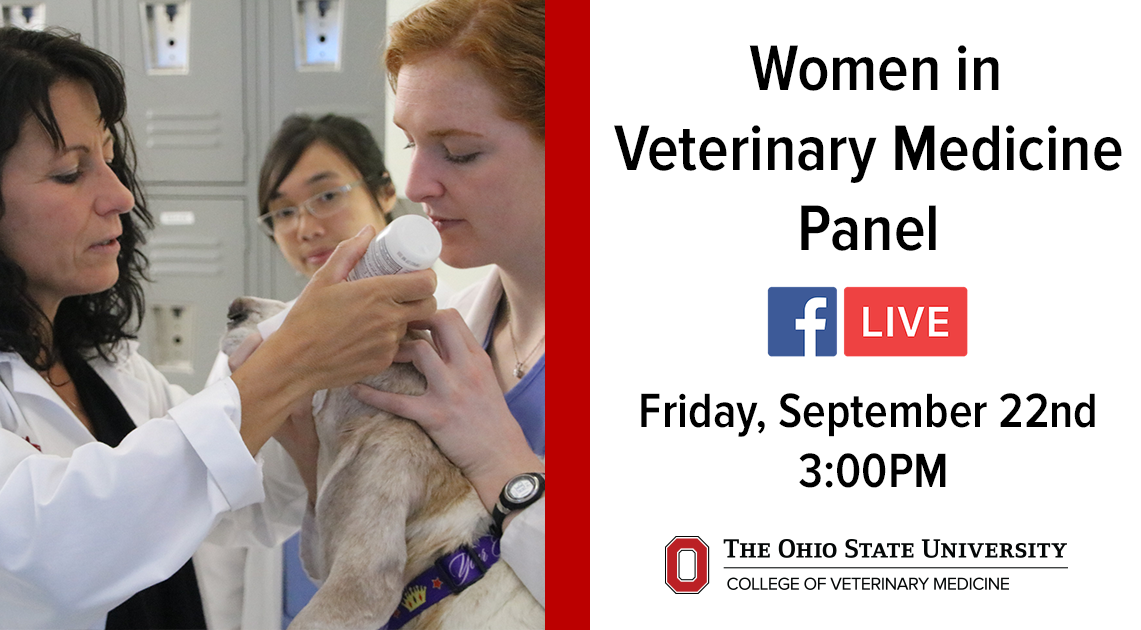 women in veterinary medicine essay Ripperger called attention to the disproportionately low number of women in veterinary veterinary medicine essay that the veterinary medical.