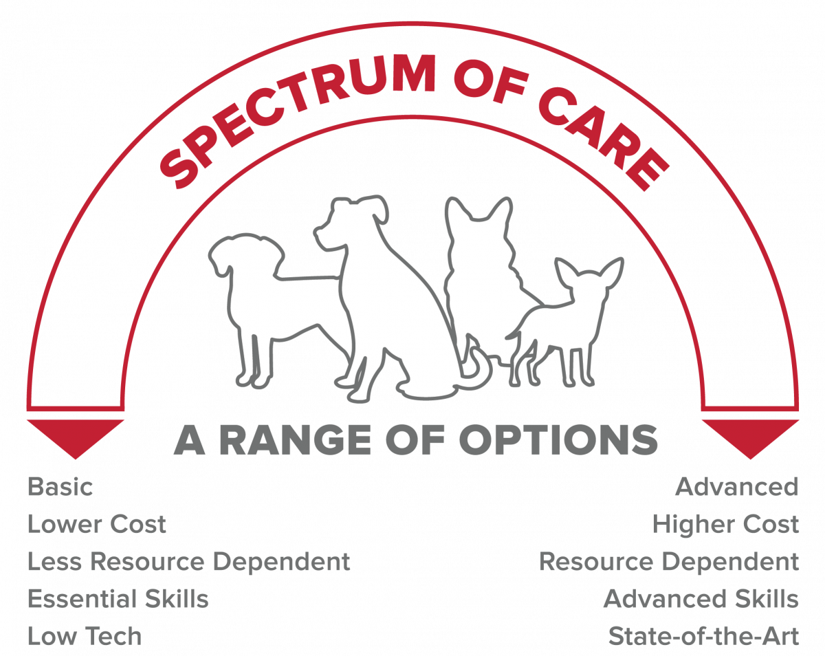 Graphic of an arch, depicting two different spectrums of care at each end