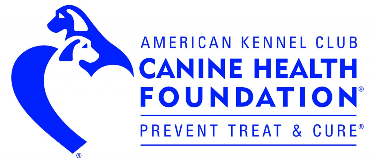 Disease Prevention At Canine Group Settings College Of Veterinary
