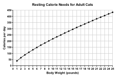 Resting Calorie Needs for Adult Cats