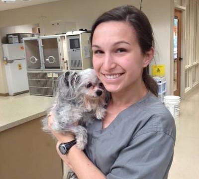 vmc dublin veterinary medical center